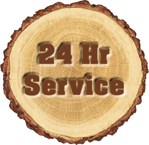 24 Hour Emergency Tree Service Near Me