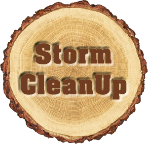 Storm Cleanup Services Near Me