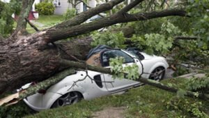 large tree fell onto a white two door convertible car crushing it