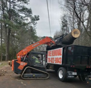 massive log from tree removal being moved using a Kubota machine