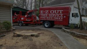 E-Z Out Tree Service commercial vehicle and equipment