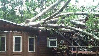 Storm cleanup Buford