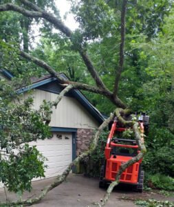 Storm cleanup tree removal for residential home