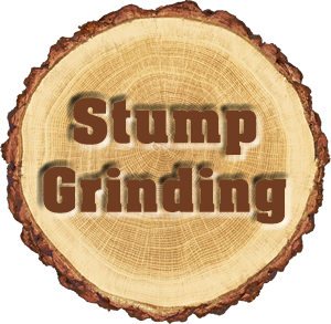 Stump Grinding Services Near Me