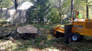 Stump grinding provide by a trained arborist using large yellow machine