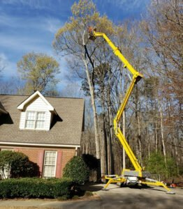 Tree pruning employee using a spider lift for high branches
