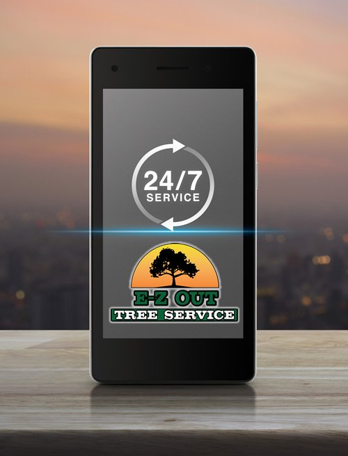 tree service near me Loganville